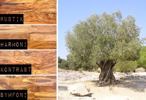 Golv av olivträ från Olivgolv.