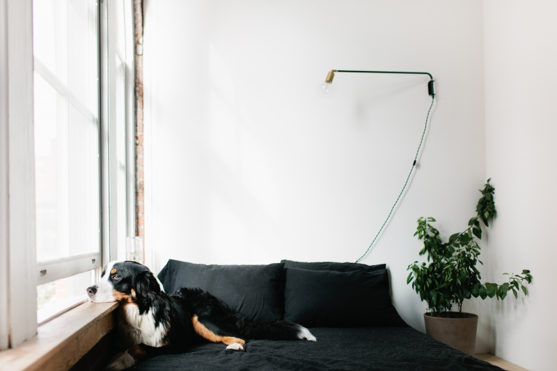 Home tour: Madelynn Furlong/Minneapolis (Theeverygirl.com) – Husligheter.se