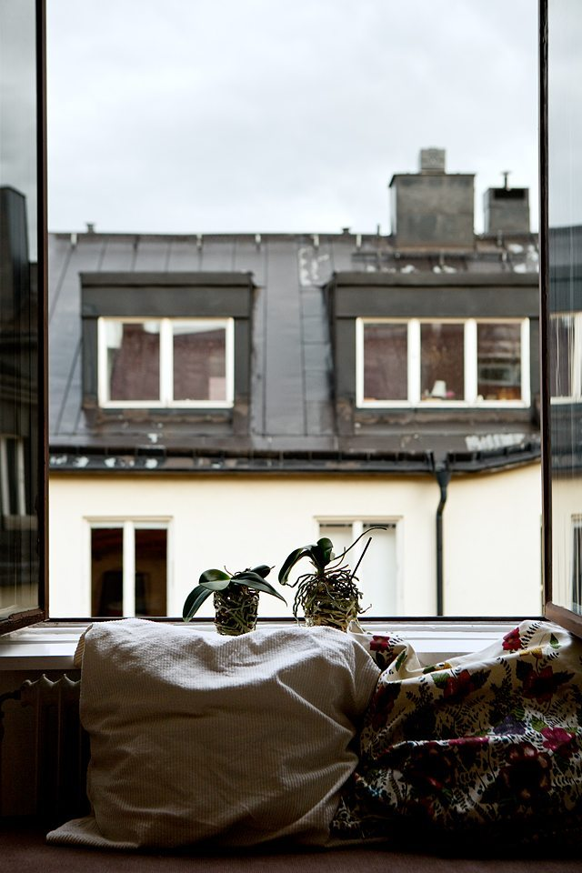 Isabelle McAllister (Fantastic Frank) – Husligheter.se