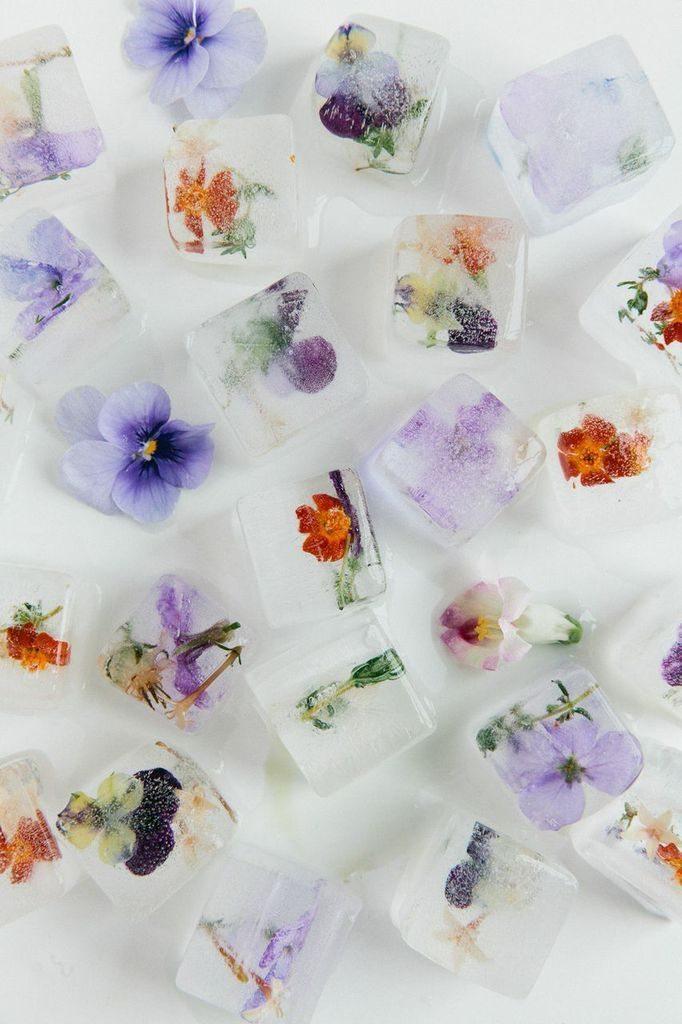Isbitar med blommor – Ginny Branch – Husligheter