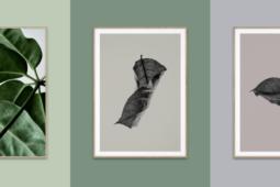 Paper Collective – Husligheter