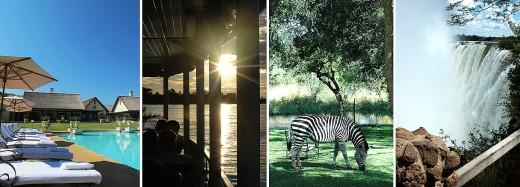 Några snapshots från resan – zebrorna betade på hotellets gräsmatta. Foto: Maria Soxbo