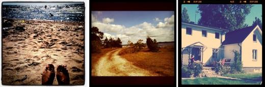 Tre iphone-snapshots från sommaren på Gotland.