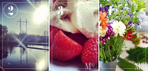 En alldeles ljuvlig morgonrunda längs bryggorna, årets första jordgubbar (belgiska) och så blomsterkursen på Beckmans.
