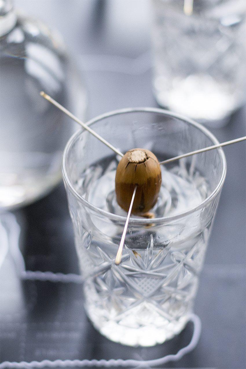 Ekollon / acorns – photo: Maria Soxbo/Husligheter