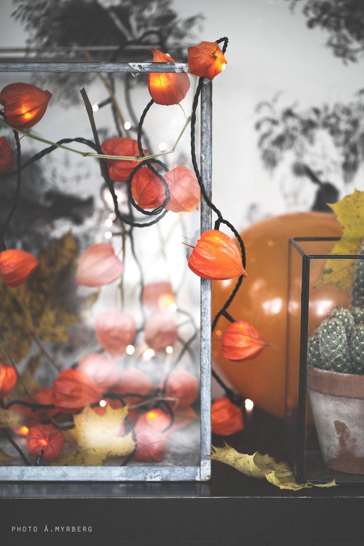 Halloween-pyssel av Åsa Myrberg/@mycasa – Husligheter