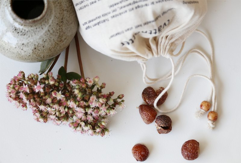 Tvättnötter – Think Organic – Husligheter