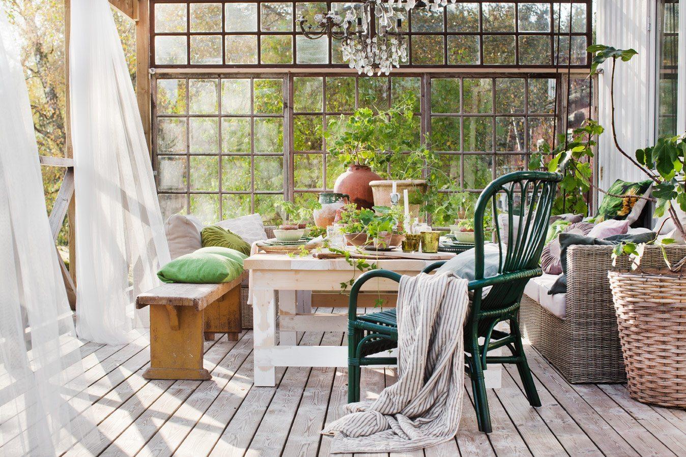Orangeri Johanna Flycht Gashi – Husligheter