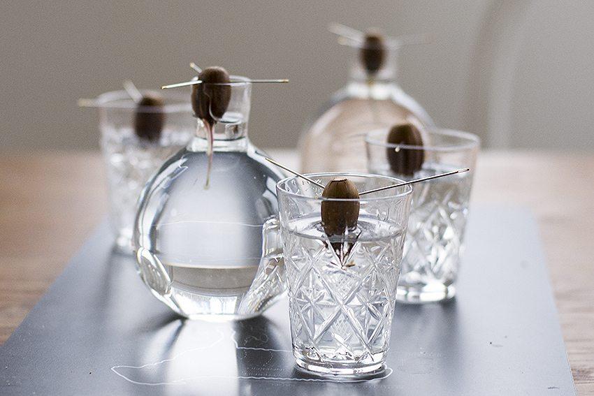 Ekollon i ekollonvas och snapsglas – Husligheter