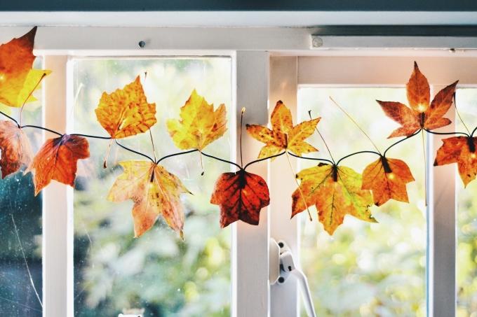 Ljusslinga av höstlöv – Husligheter