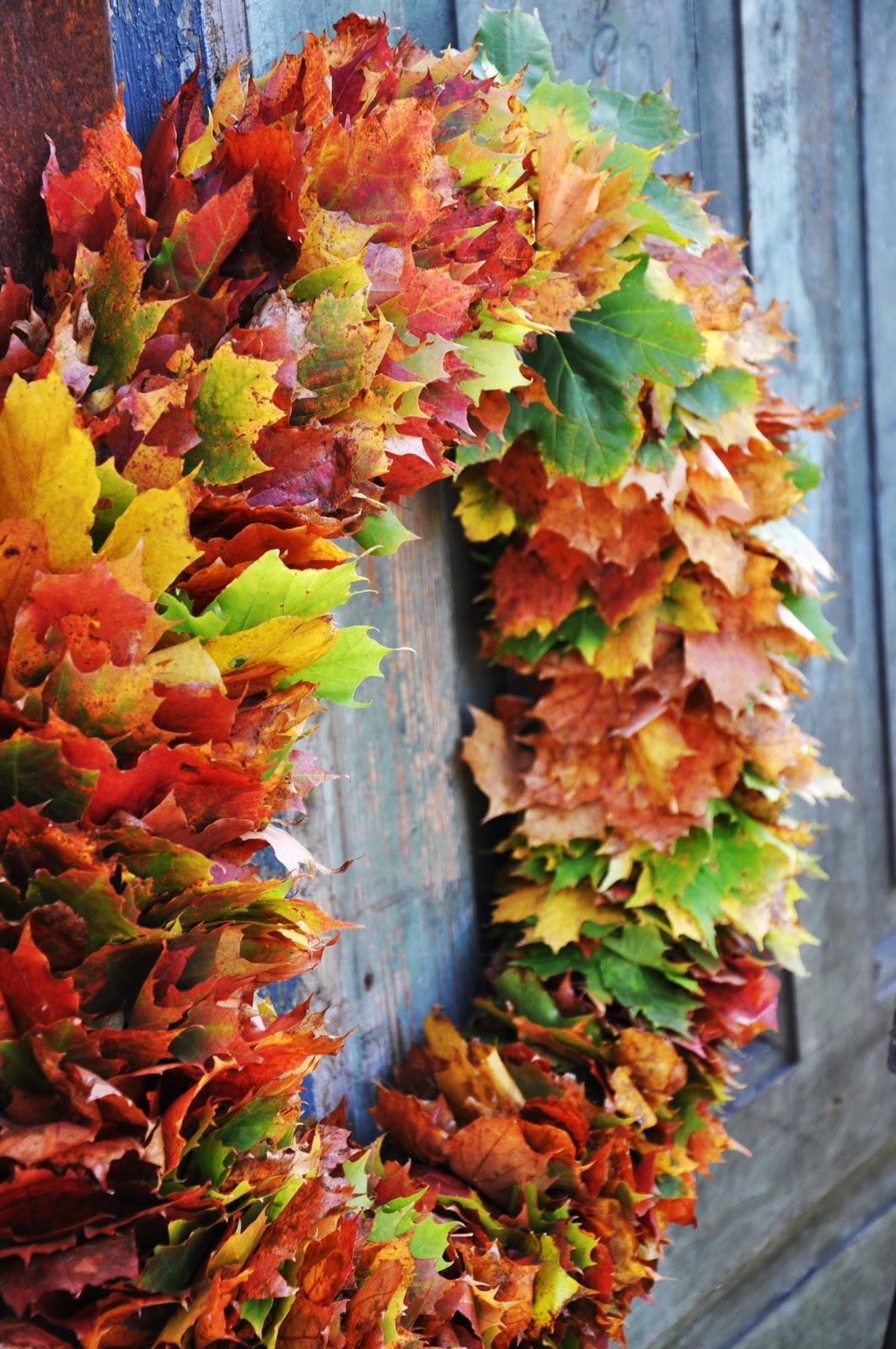 Lövkrans (Liljor & tulpaner) – Husligheter
