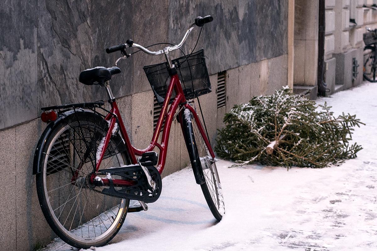 Min dag i 10 bilder – röd cykel och julgran – Husligheter