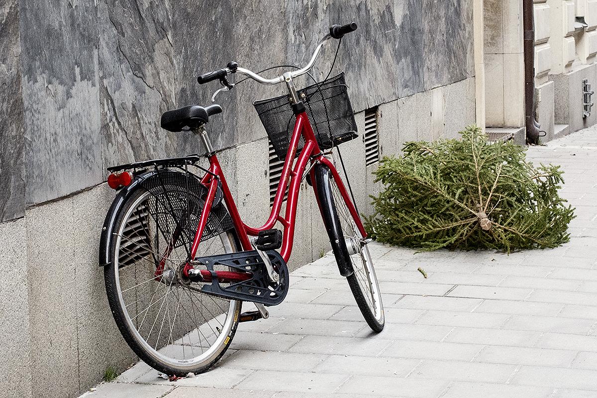 Min dag i 10 bilder – röd cykel och slängd julgran – Husligheter