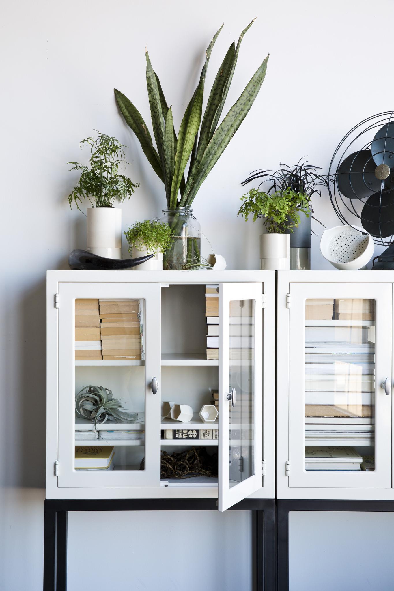 Vitrine cabinet, green plants, fan – Husligheter