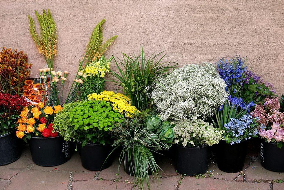 josef-frank-millesgarden-blommor-husligheter