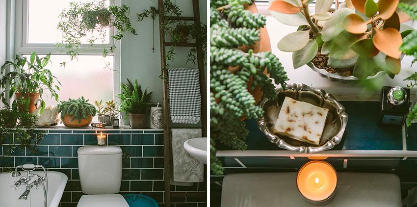 Gröna växter i badrummet – Husligheter