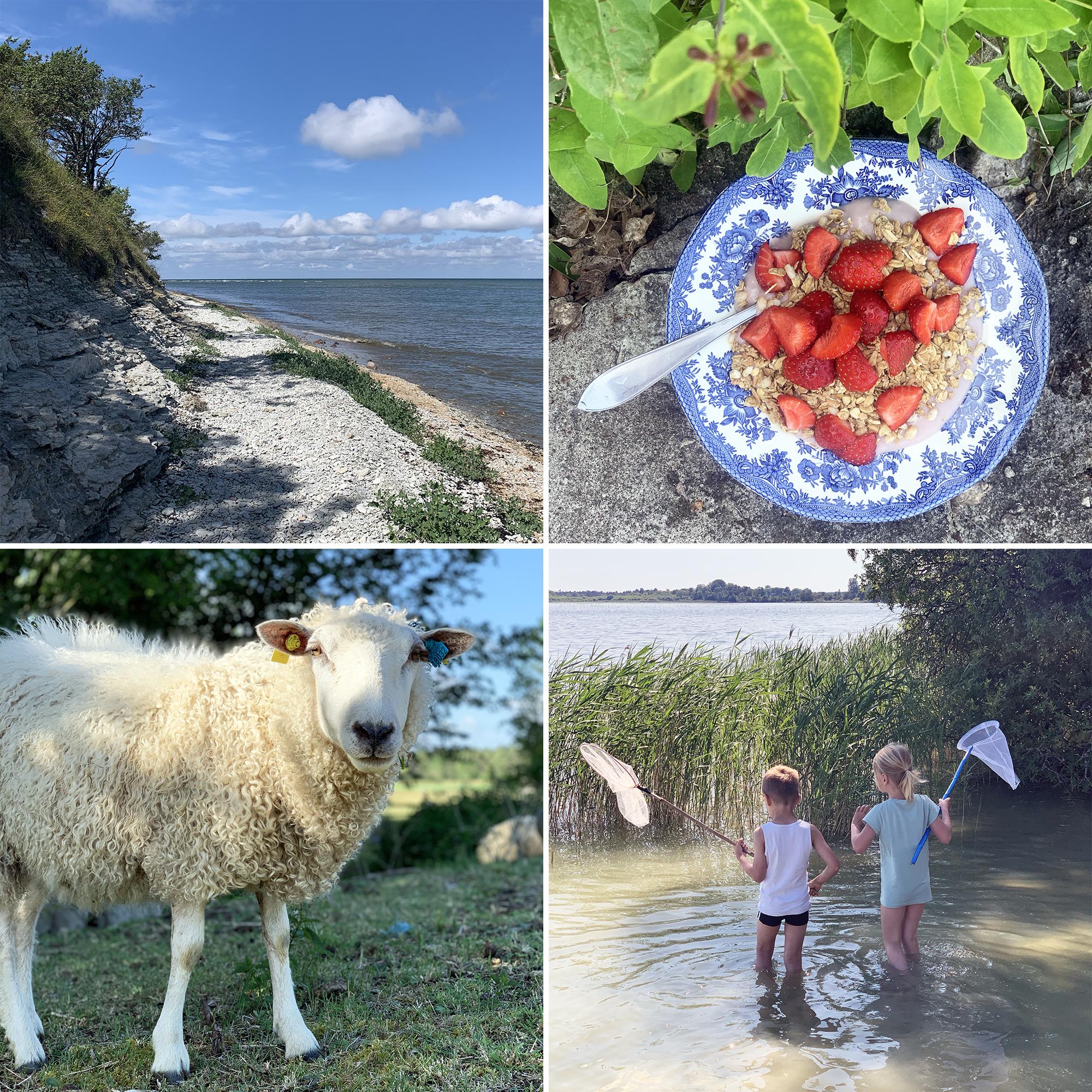 Att leva lokalt – och hitta sin plats på jorden