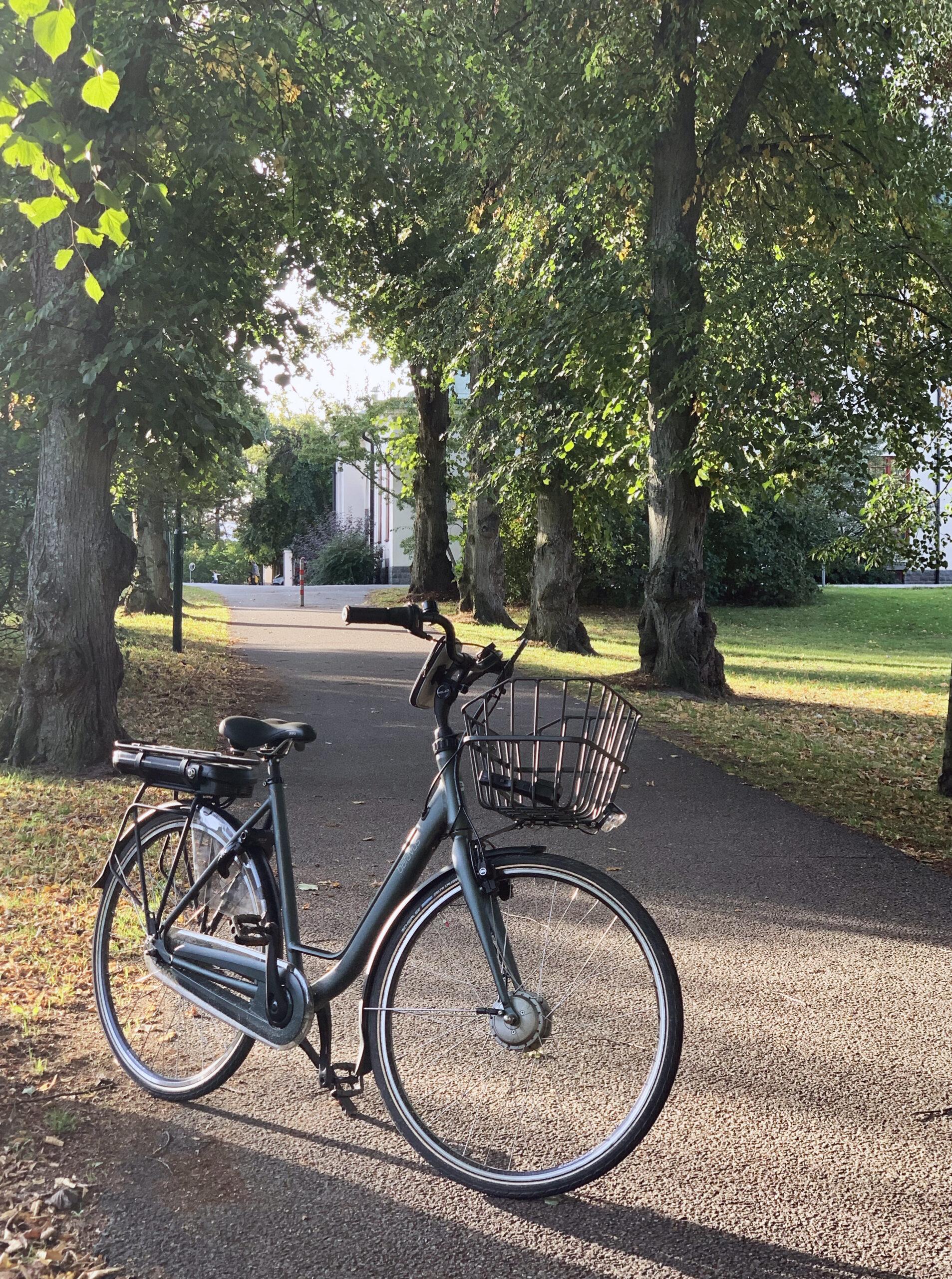 Köpa elcykel – mitt val, min upplevelse och mina svar på era frågor
